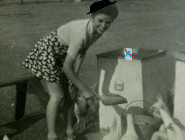 Suburban hipster raising chickens in 1953 Photo credit Seymour Cohen
